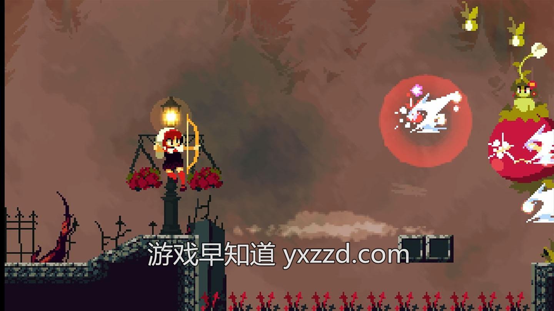 桃与多拉:月光下的遐想