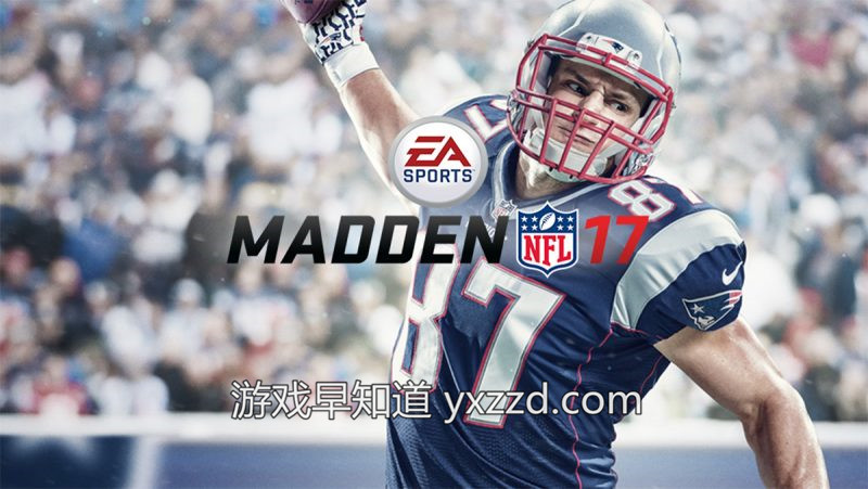 麦登橄榄球NFL