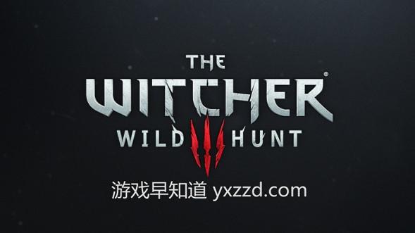 巫师3witcher3